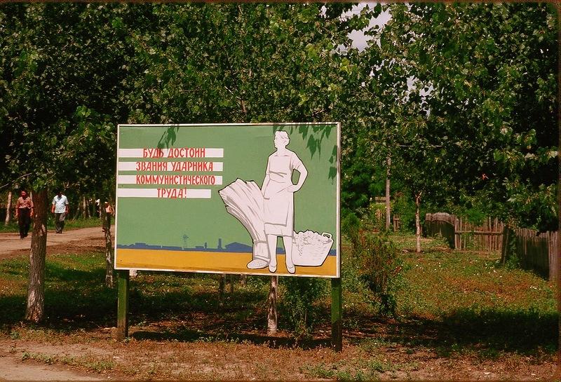 Краснодар: зеленый и без пробок?