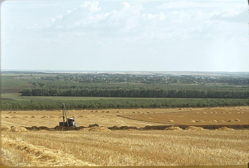 Жители Краснодара заняли пятое место в России по высокомерию